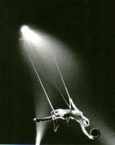 trapezeencshow